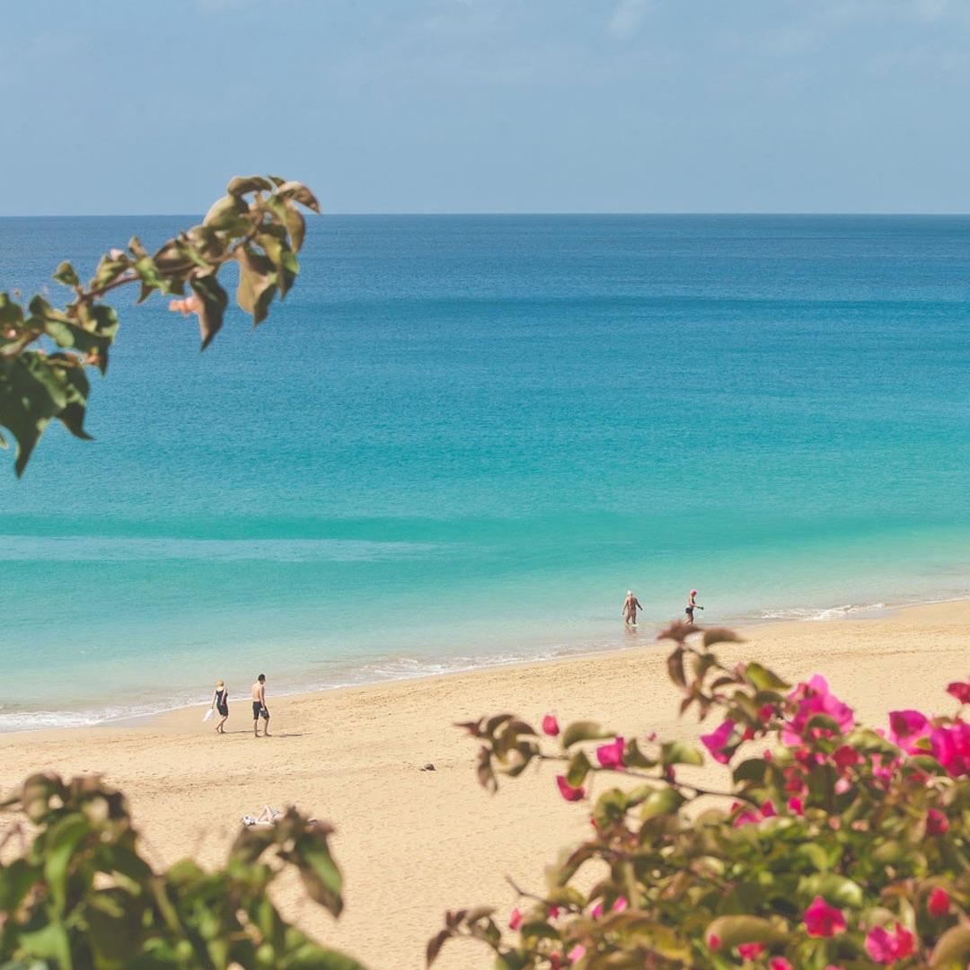 Die wunderschönen weißen Sandstrände sind das Highlight Fuerteventuras. Zumal alle anderen kanarischen Inseln eher mit Sandstrand geizen. Unser Favorit ist die fast 15 Kilometer lange Bucht von Cofete im Südwesten Fuerteventuras.