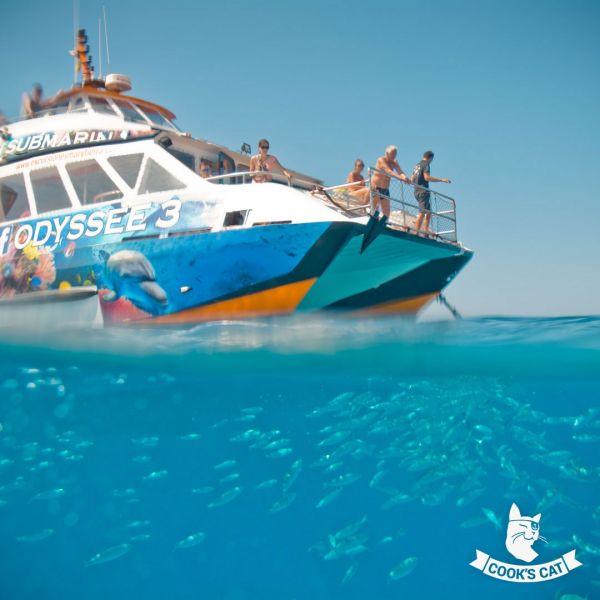 Glasboden-Bootsausflug in die Unterwasserwelt Fuerteventuras