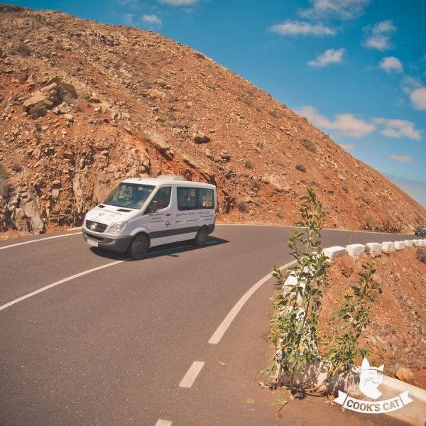 Bequeme Minibus Rundfahrt von La Pared bis Corralejo