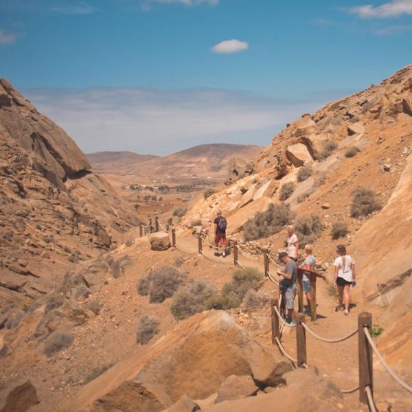 Cooks-Cat_Fuerteventura-Ausfluege_Wandern