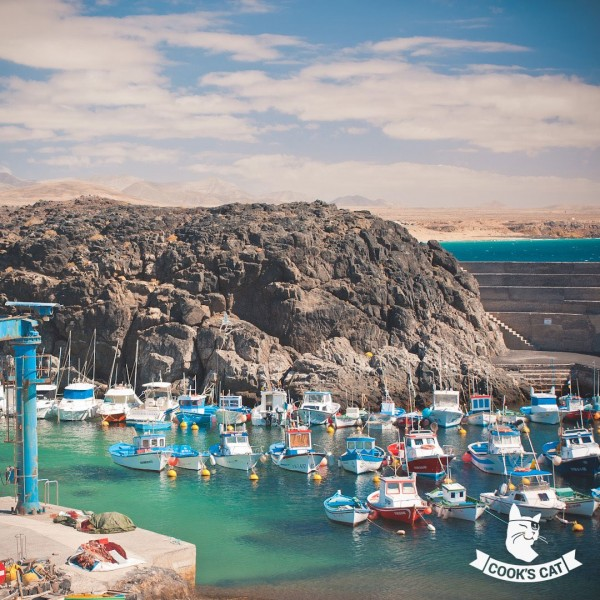 Cook-s-Cat_Fuerteventura-Ausfluege_Fuerteventura-in-7-Tagen_Fischer-Hafen-Cotillo