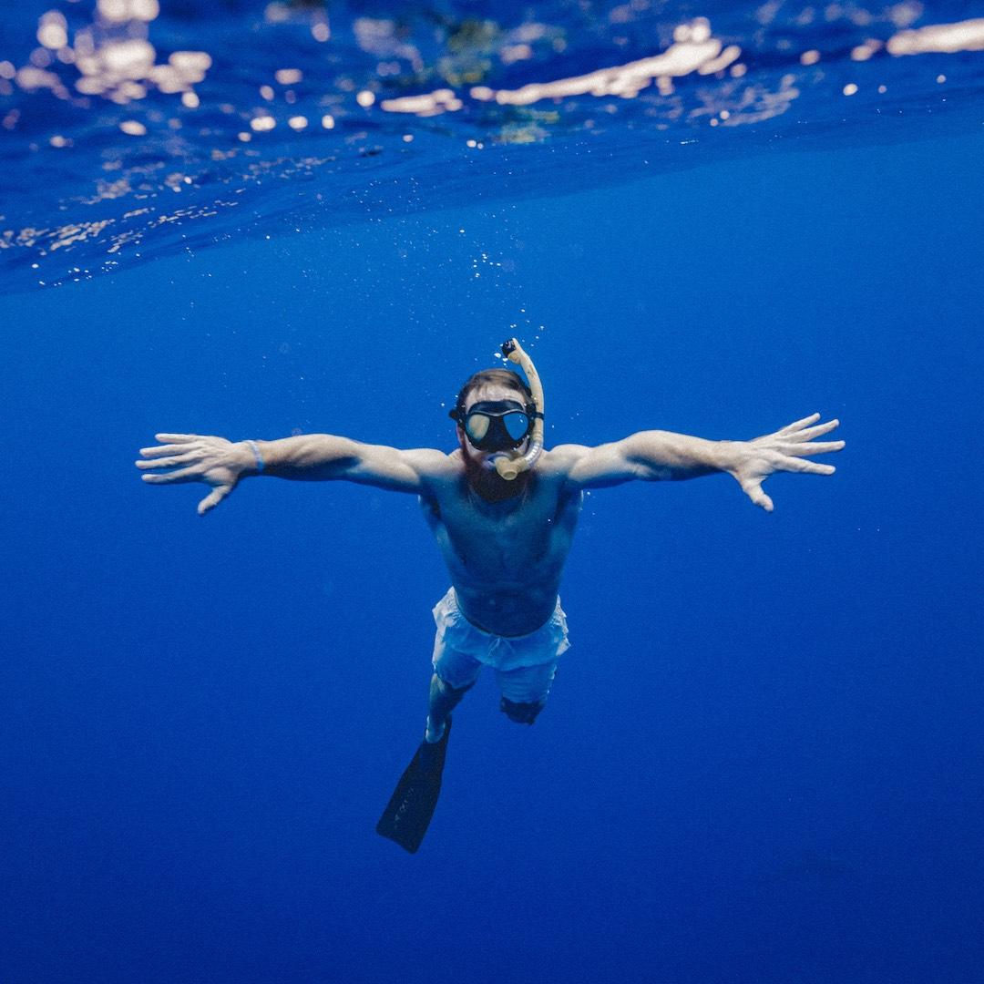Fuerteventura hat vor seinen Küsten einiges zu bieten. Wer durch das kristall klare Wasser schwebt, kann sich häufig über Sichtweiten von weit über 10 Metern freuen. Sie haben dadurch sehr große Chancen an den Hotspots große Rochen, Schildkröten, Engelhaie, Papageifische, Drückerfische, Muränen, Tunfische oder Baracudas zu sehen.