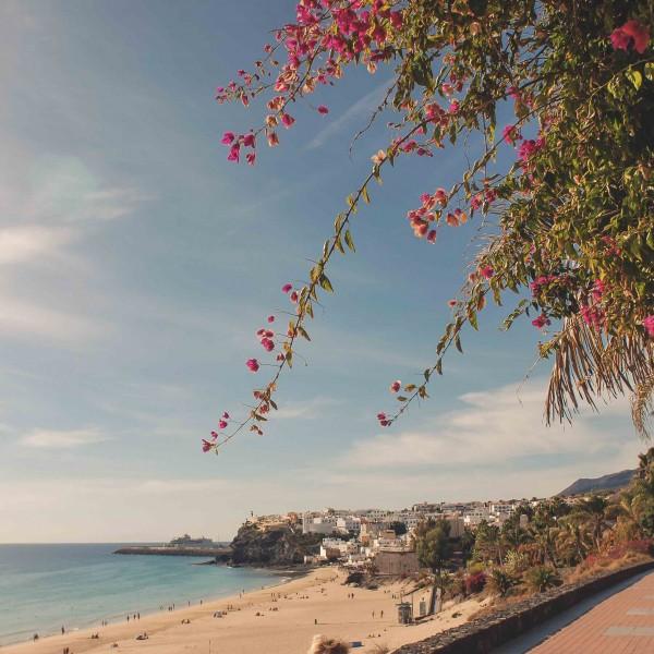cookscat_fuerteventura-ausfluege_fuerteventura-fuerteventura_blog