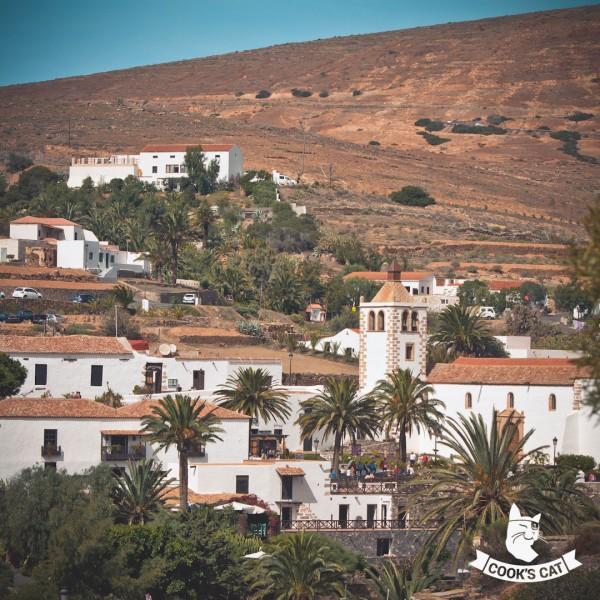 Cooks-Cat_Fuerteventura-Ausfluege_Inselrundfahrt-zu-den-Sehenswuerdigkeiten-Fuerteventuras