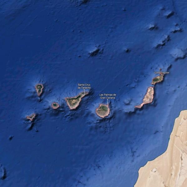 Cooks-Cat_Fuertevenutra-Ausfluege_Kanarische-Inseln-1